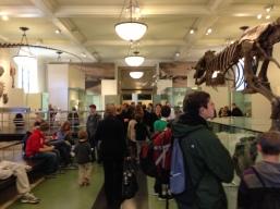 Crowd, AMNH